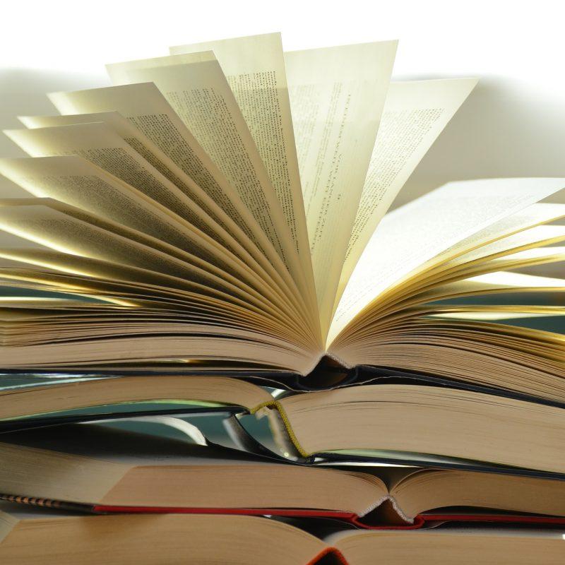 books i read, book list, taslim jaffer writer