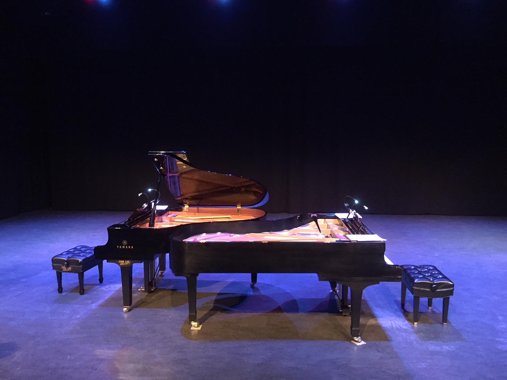 Bergmann Piano Duo, Surrey Civic Theatres, surrey bc, taslim jaffer, taslim jaffer writer, surrey arts scene